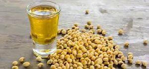 Soybean Seed Oil