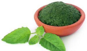 Tulsi Leaf Paste