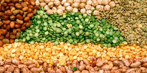 Agro Commodities Trading Service