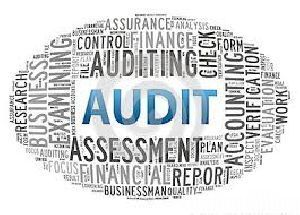 Mca Compliance Audit Services