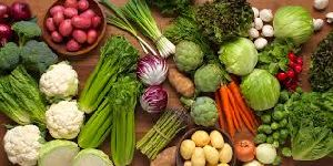 Fresh Vegetables & chinease Vegetables