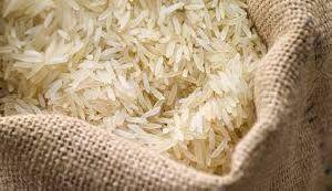 basmatri rice