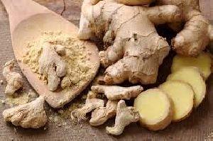 Fresh Ginger 01
