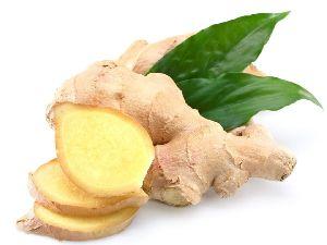 Fresh Ginger 02