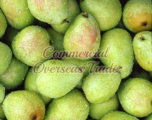 Delicious Fresh Pear Fruits