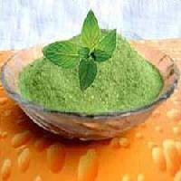 Dehydrated Mint Leaves Powder