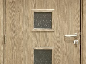 Bwp Flush Doors