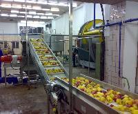 Apple Juice Processing Machinery