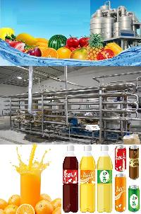 Mango Juice Processing Machinery