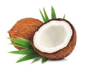 Fresh Coconut 03