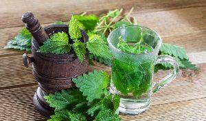 Mint Leaf Oil