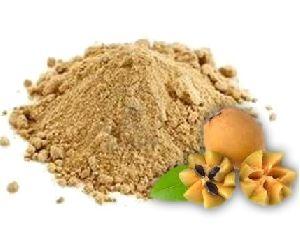 Spray Dried Sapota Powder
