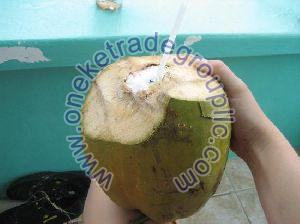 Fresh Coconut Water