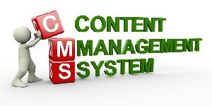 Content Management Software Services