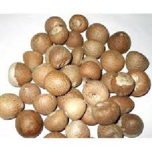 Areca Nut