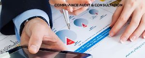 Compliance Audit & Consulting Services