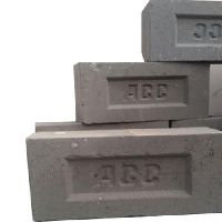 Large Fly Ash Brick