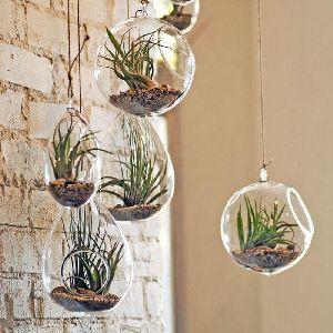 Hanging Glass Flower Pots