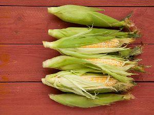Whole Yellow Corn