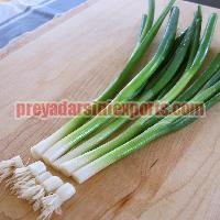 Fresh Scallion Onion