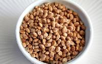 Charoli Seeds