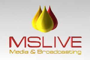 Live Video Webcasting Services