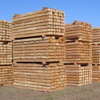 Plantation Teak Wood Sawn Clean Cut Lumber