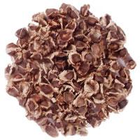 Moringa Oleifera Seed (PKM II)