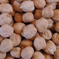 White Kabuli Chickpeas