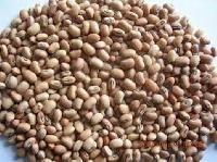 Cow Peas Beans