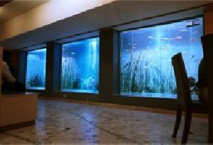 Ultra Large Aquariums