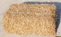 Coir & Agro Products