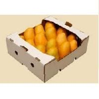 Mango Packaging Boxes