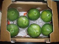 Papaya Packaging Boxes