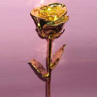 Gold Plated Roses (14 Inch.)