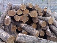 Togo Teak Logs