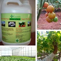 Hydroponics Fertilizer