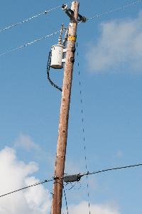 Wood Transmission Poles