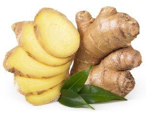 Natural Fresh Organic Ginger