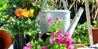 Garden Accessories