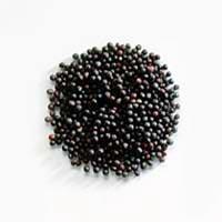 Black Mustard Seeds (Brassica Nigra)