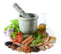 Medicinal Plants Extracts