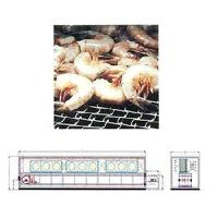 Conveyor Freezer