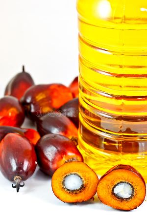 Palm Olein Oil