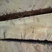 Grarda Yellow Sandstone