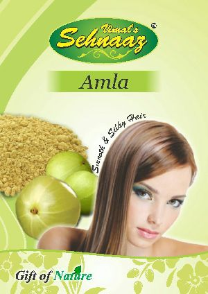 Amla Hair Wash Powder