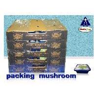 Fresh Punnet Mushroom