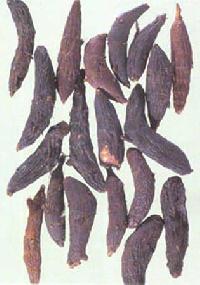 Cyperus Root Oil
