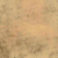 Rustic Floor Tiles (300x300)
