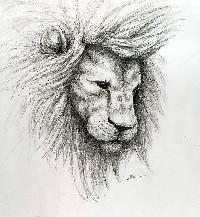 pencil sketche